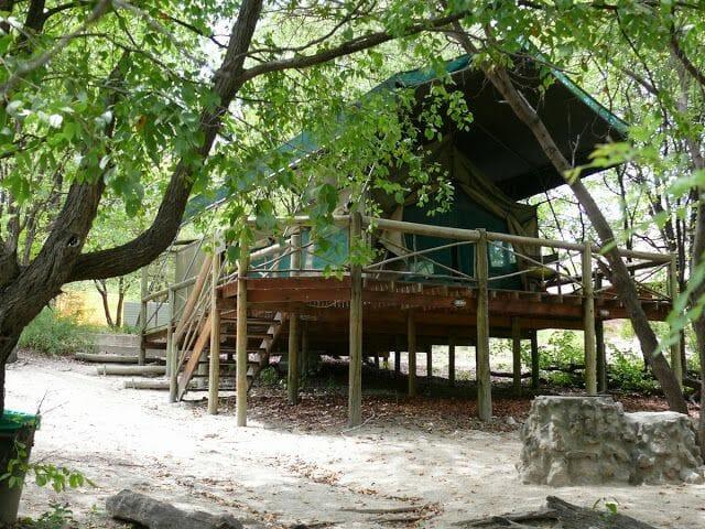 audi camp, camping botswana, camping maun, acampar en botsuana
