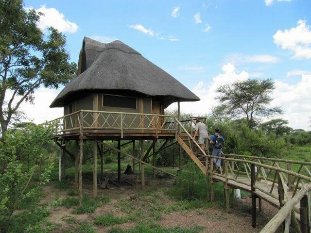 LODGE BOTSWANA, waterlily lodge, safari botswana