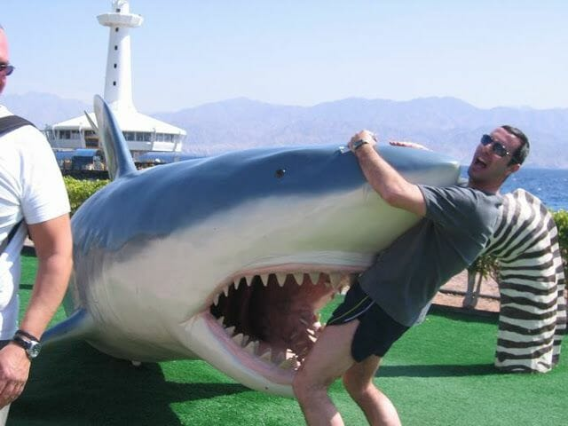 fotos haciendo el turista tiburon ataque