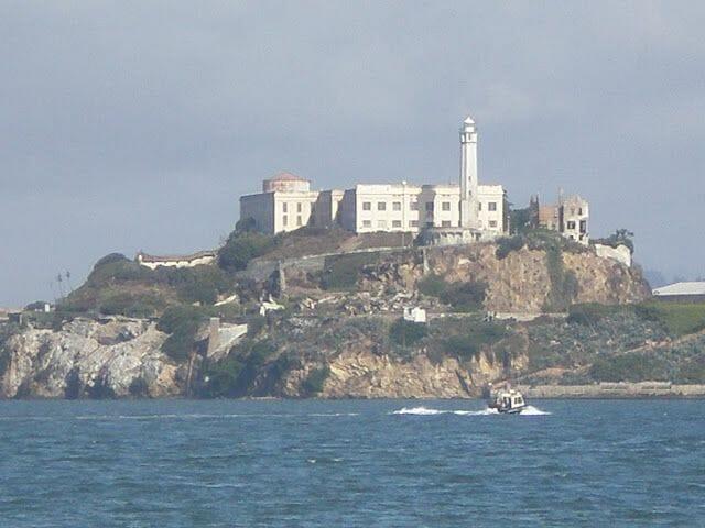 Alcatraz sobre la roca