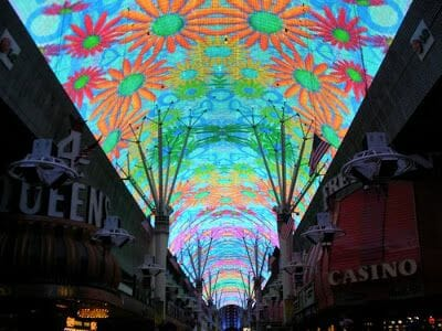 Fremont Experience