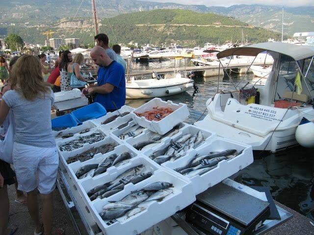 pescar Montenegro