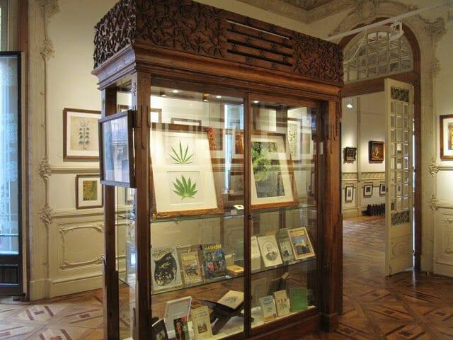 sala museo cannabis