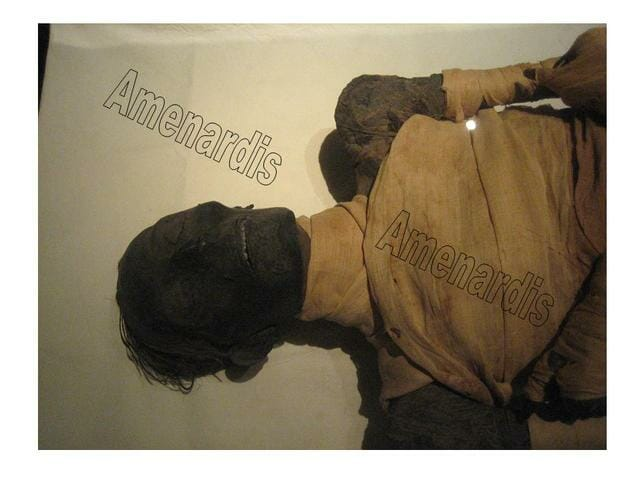 momia de Tutmosis IV en el museo de El Cairo