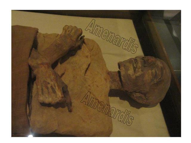 momia de Merneptah en el museo del Cairo