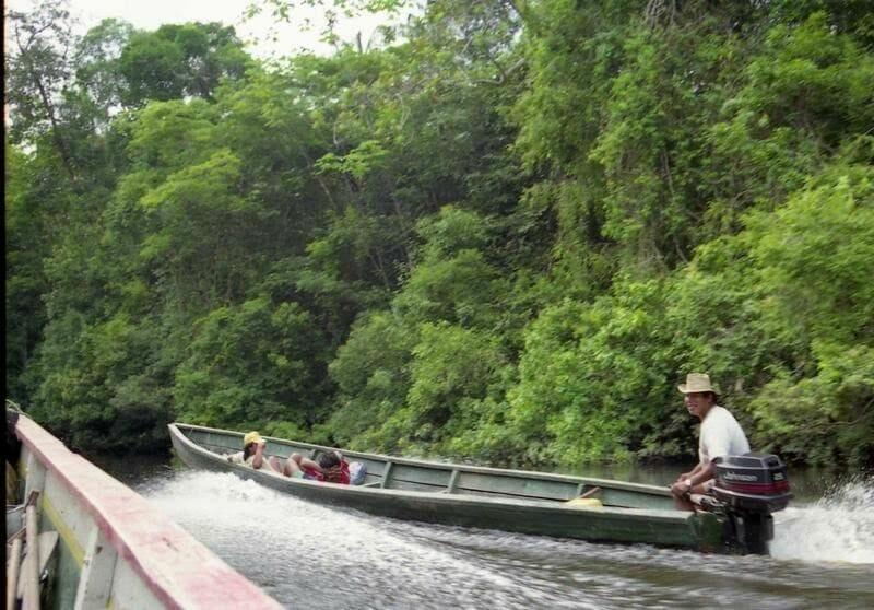 canoa selva