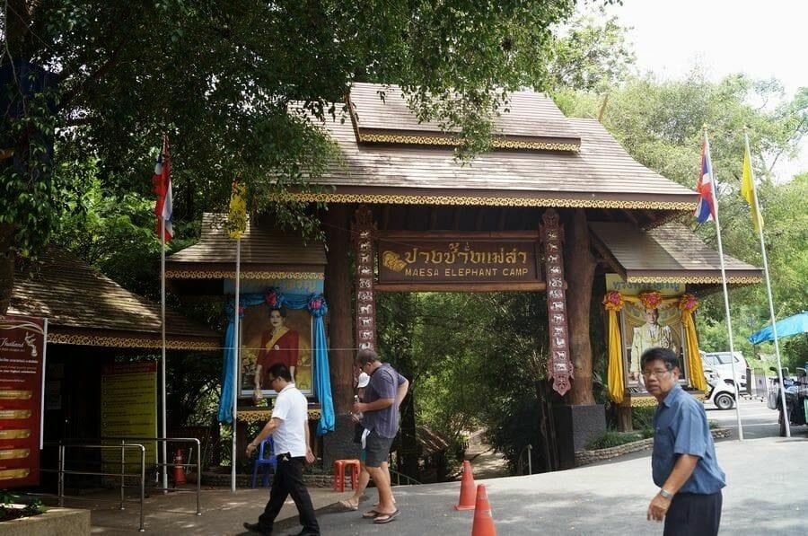Maese Elephant park Chiang mai