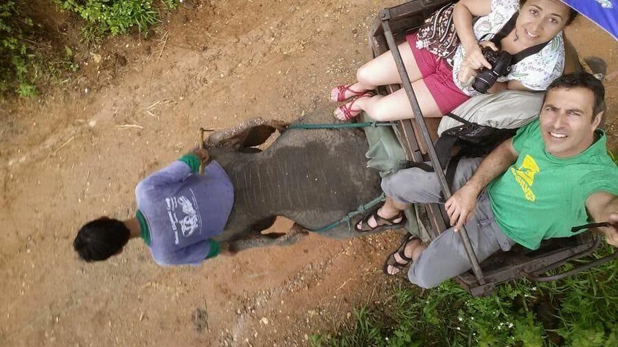 Paseo en elefante (Elephant Park Chiang Mai)