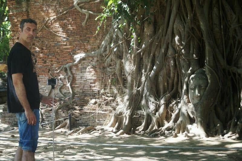 Wat Mahathat cabeza buda entre raices