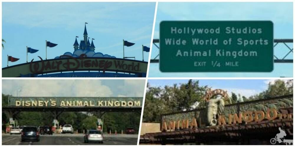 entrada disney animal kingdom orlando