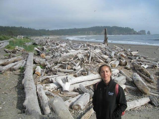 troncos en la playa de la push