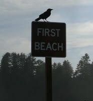 first beach la push