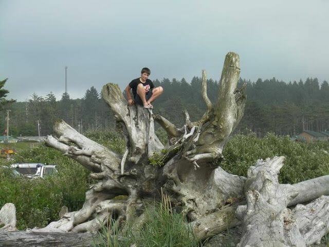 playa de la push troncos parque