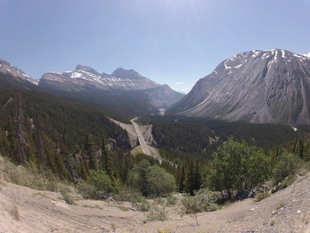 carretera del lago Peyto al glaciar athabasca