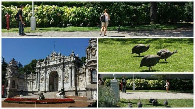 jardines del palacio de Dolmahbaçe