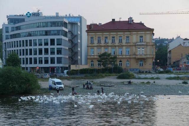 Paseo en barco en Praga por el río Moldava