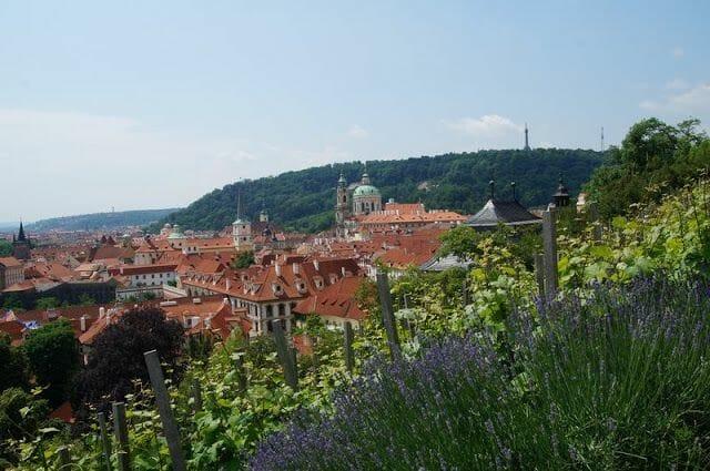 vides del castillo de Praga