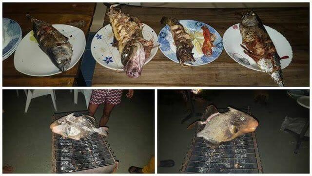 pescado maldivas