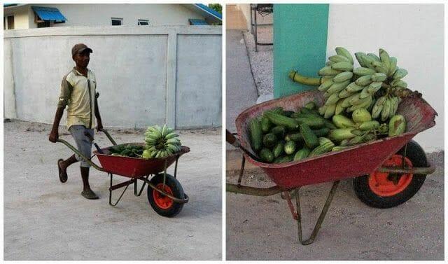 fruta isla de Nilandhoo Maldivas
