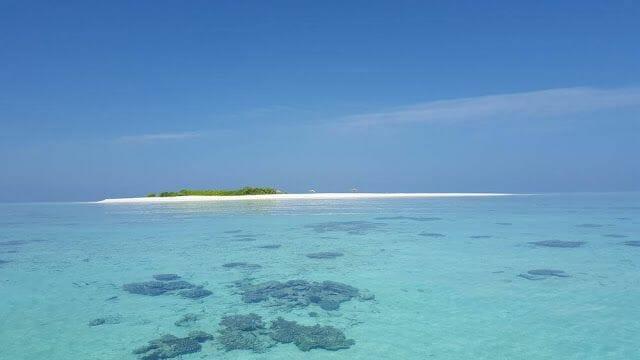 isla Odagalla