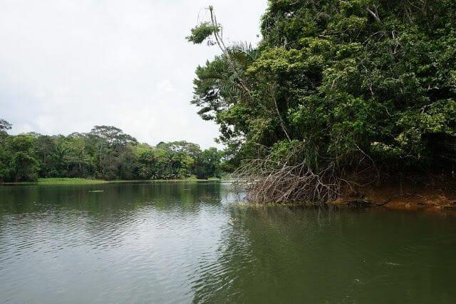 lago Gatún Panamá