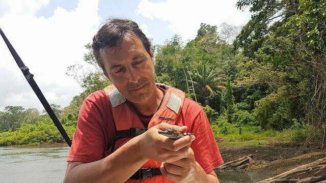 lago Gatún caiman