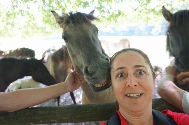 selfie con un caballo