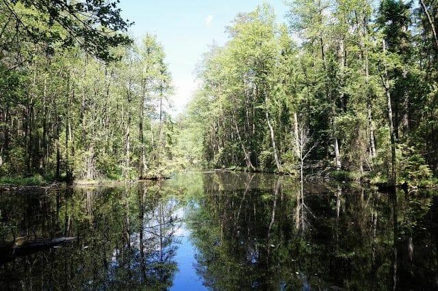 lago parque nacional de Roztocze