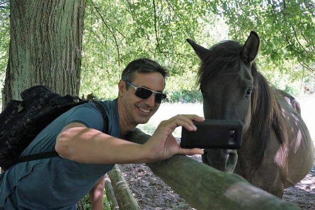 caballo parque nacional de Roztocze