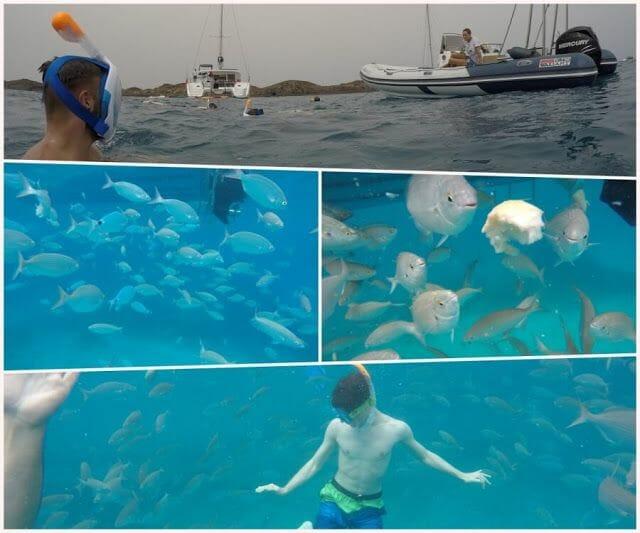 snorkel en isla de Lobos