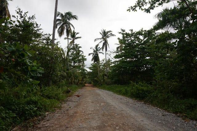 camino sin asfaltar a playa rincon