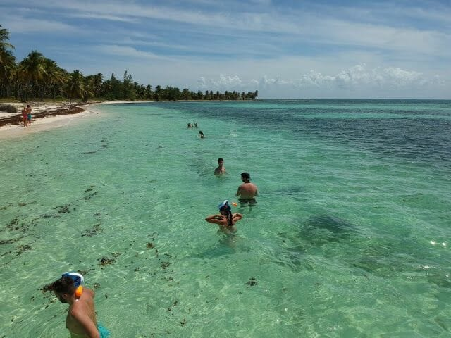snorkel en playa isla saona