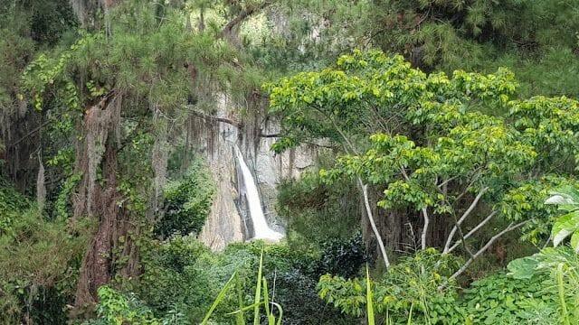 SALTO JIMENOA entre la vegetacion