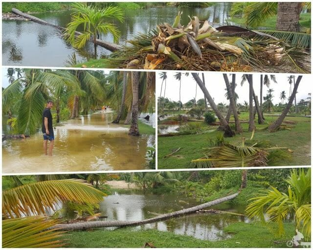 consecuencias de huracán María