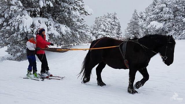 caballos pistas de esquí de Beille en el Ariège