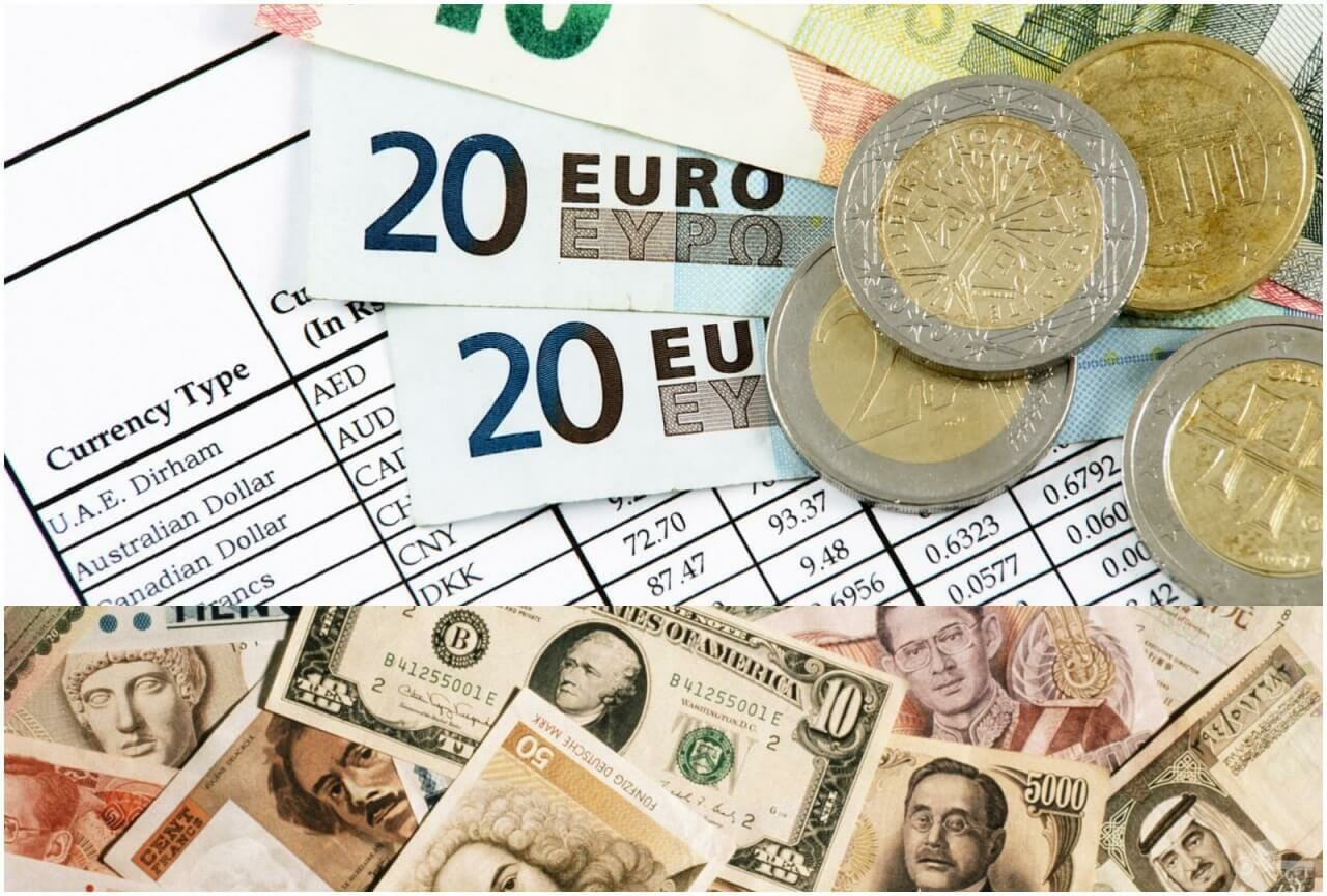 ria cambio de divisas