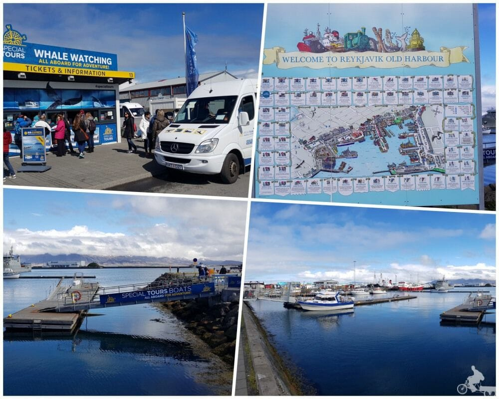 special tours reykjavik