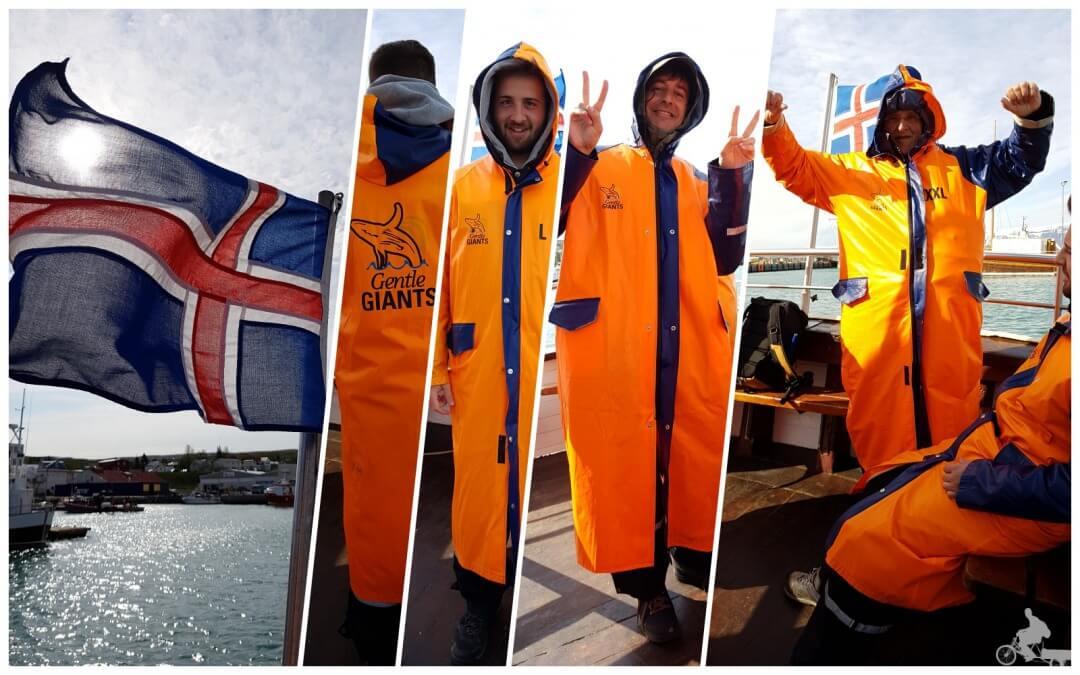 ropa para ver ballenas islandia