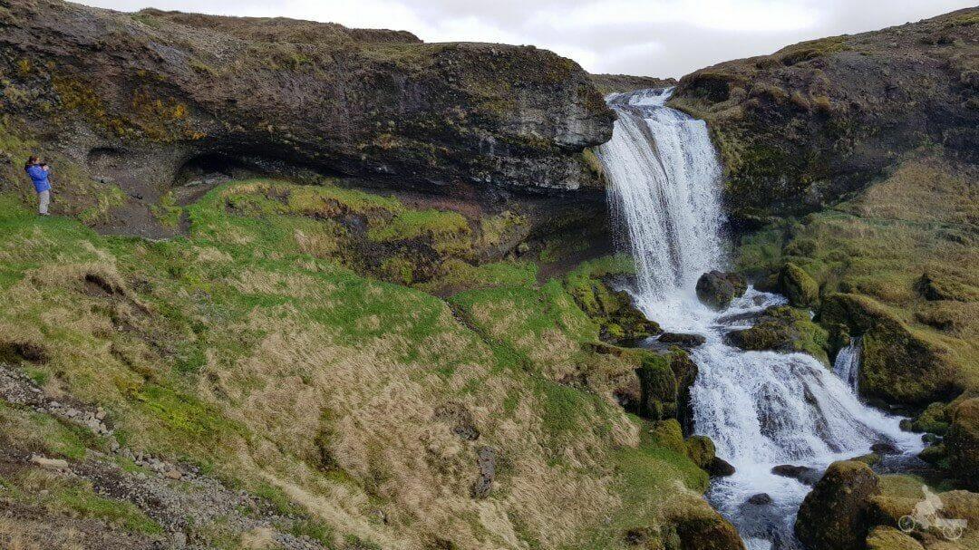 sheep waterfall