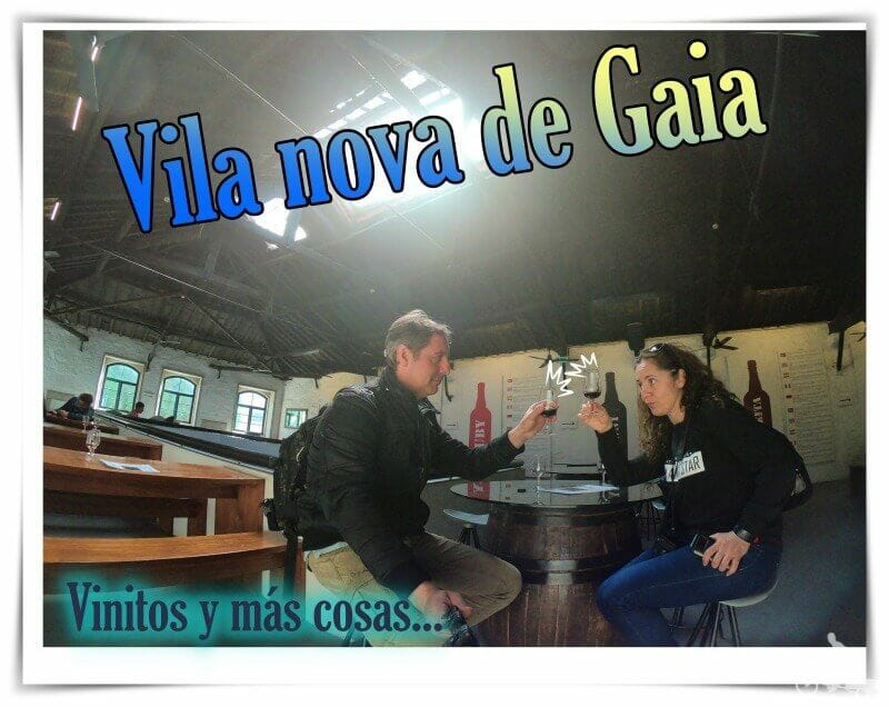 Vila Nova de Gaia - que ver