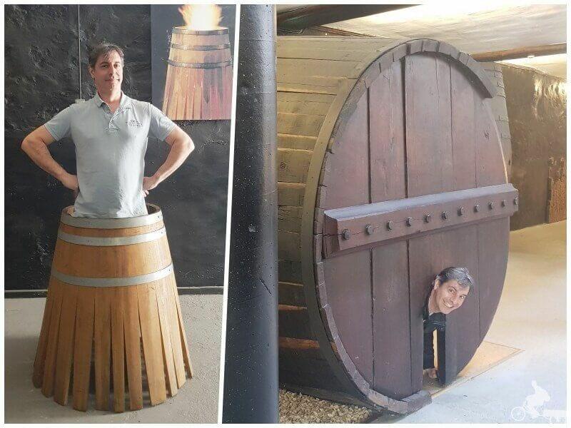 bodegas vino oporto vila nova de gaia