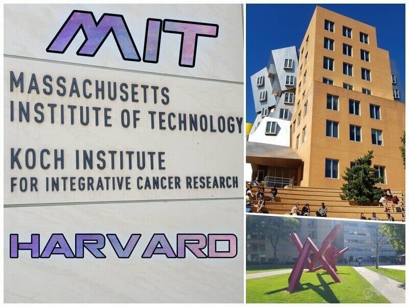 qué ver en Harvard y el MIT
