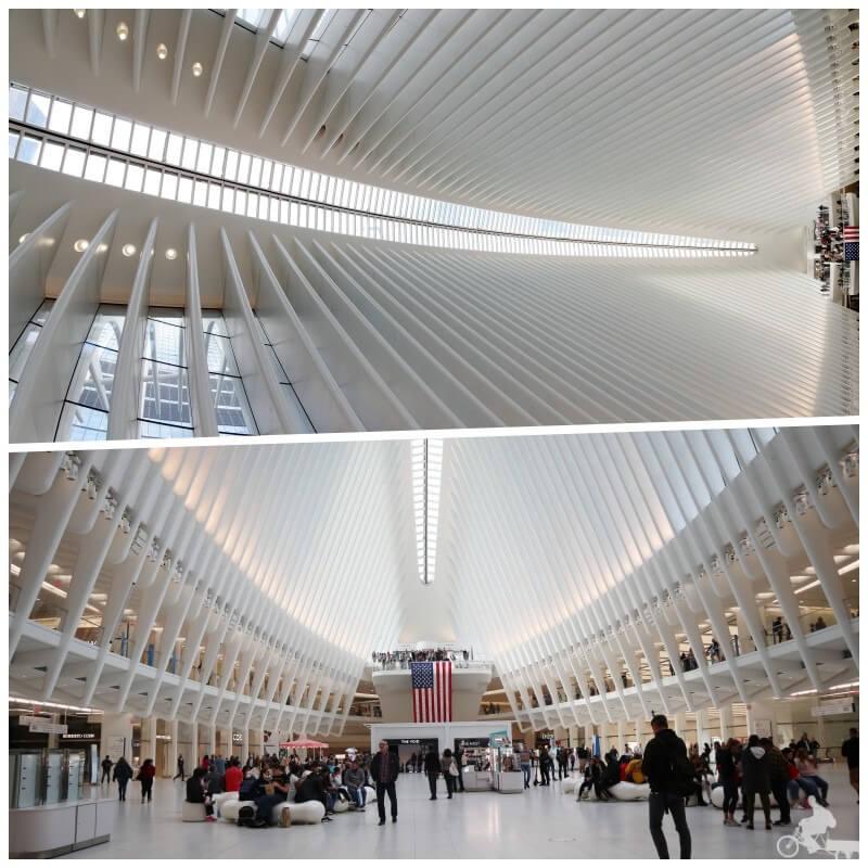 vestibulo oculus new york