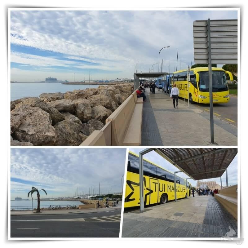 parada buses puerto palma mallorca