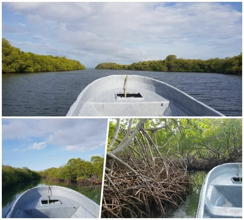 parque nacional manglares punta rucia