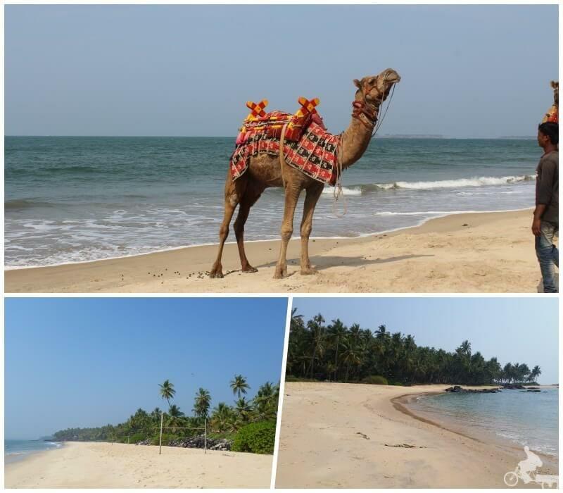 playas de Goa - India del Sur