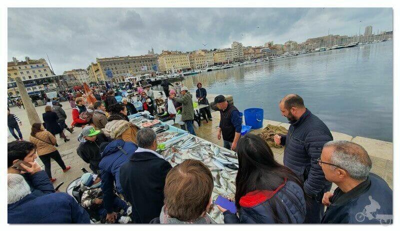 free tour puerto de Marsella