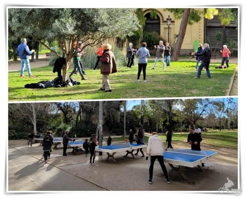 actividades parque ciutadella