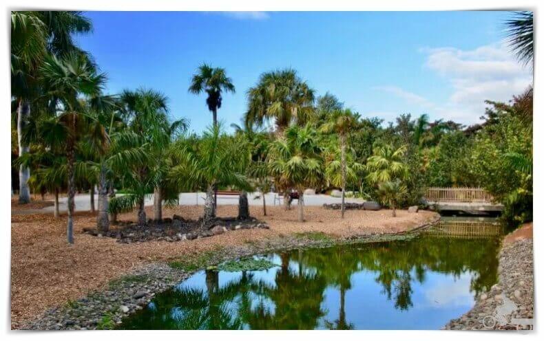 Palmetum - Mejores Free Tours en Tenerife