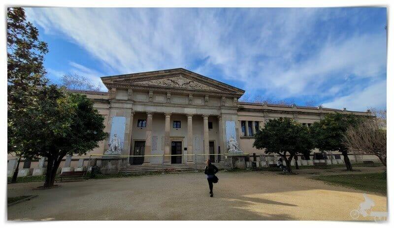Museo de Geología - Museo Martorell